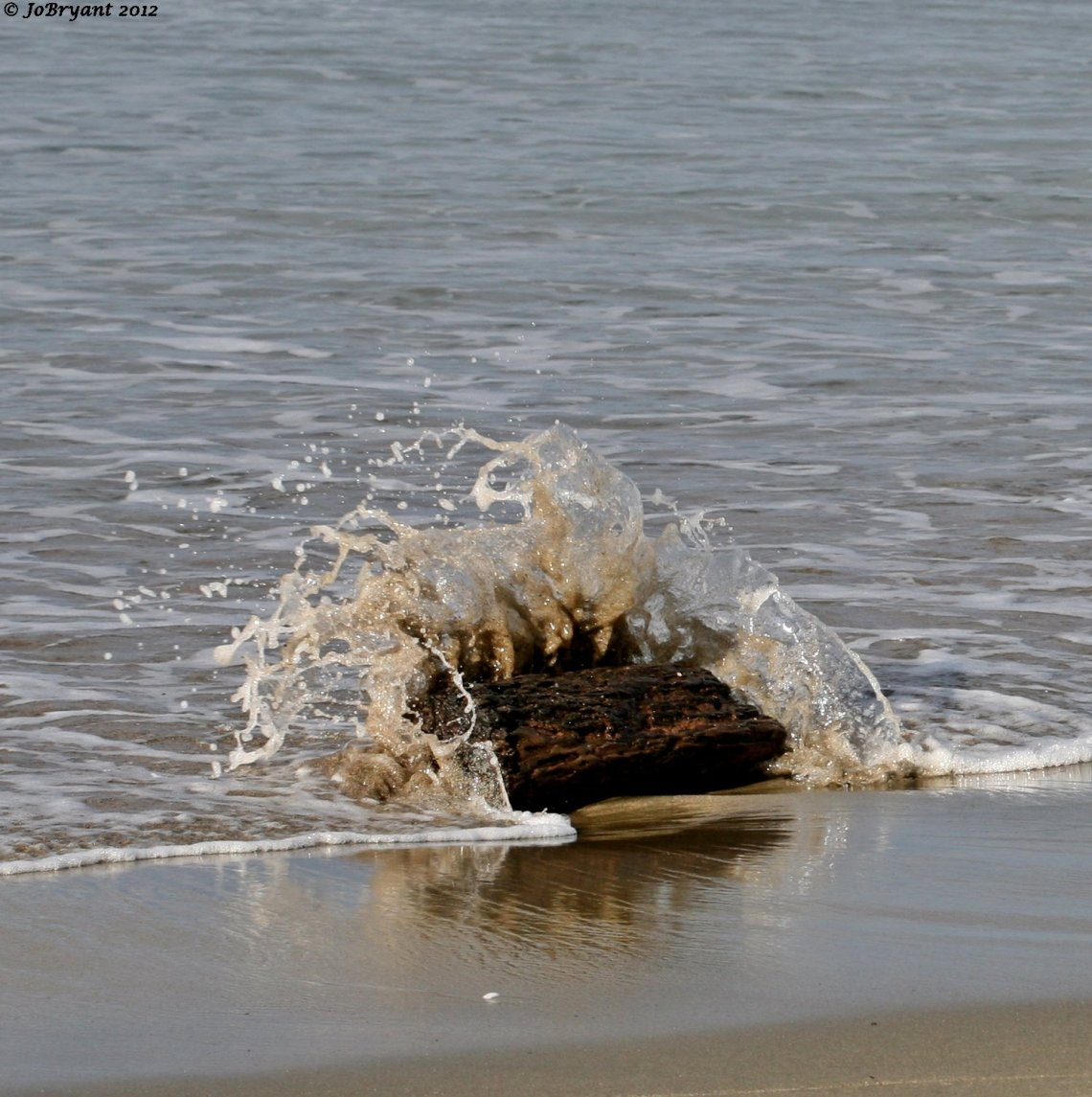 log in the waves