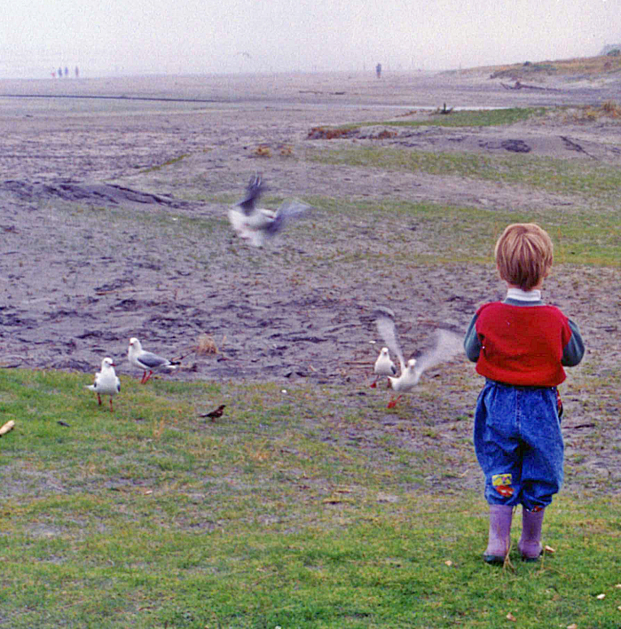 The Son turned 21 and with that milestone I couldn't help but compare the young man chasing life with the little boy chasing birds he knew he'd never catch because he loved the feeling.