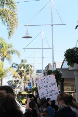 Tauranga Animal Testing Protest 30.7.2013 (14)