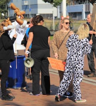 Tauranga Animal Testing Protest 30.7.2013 (9)
