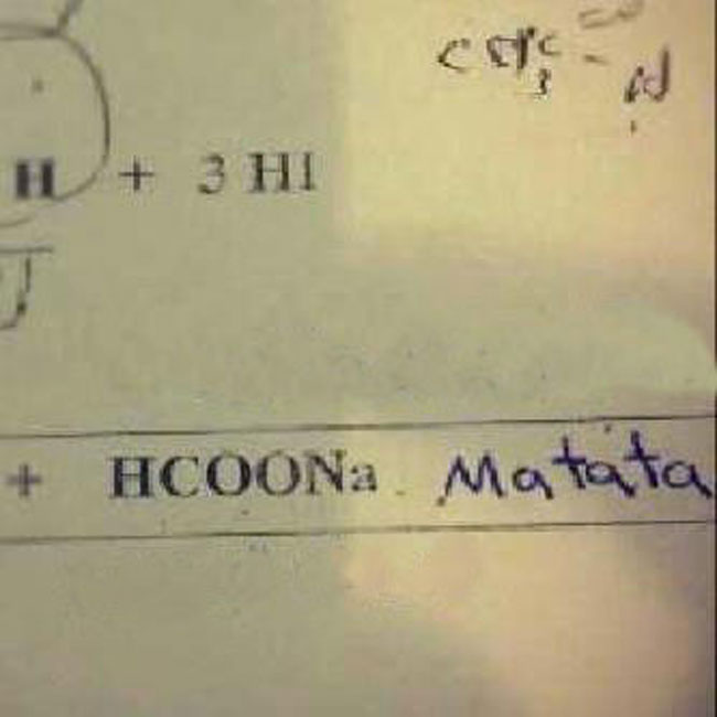 test-answers-that-are-totally-wrong-but-still-genius-9