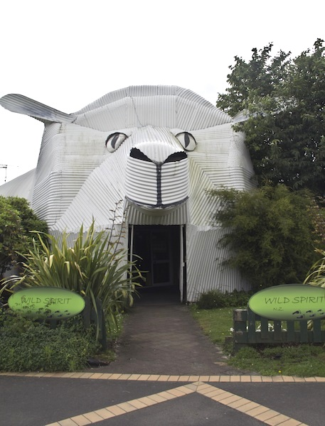 Big Sheep Wool Gallery Tirau