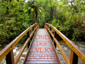One Trip Every Month logo