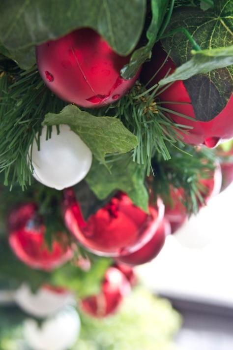 Christmas Tree, Bethlehem New Zealand