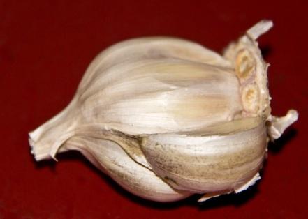 garlic...can't get enough garlic