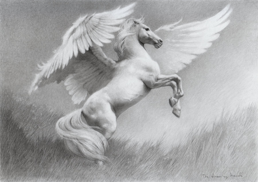 Pegasus by 'thedrawinghands'